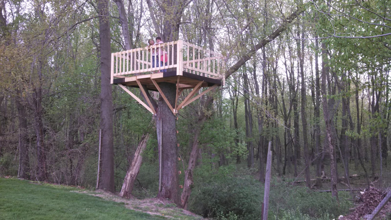 Simple Tree Houses To Build For Kids wwwimgarcadecom