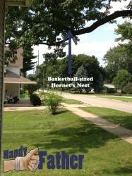 remove a hornet's nest