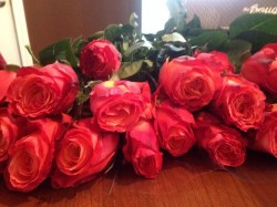 sending online flowers thebouqs